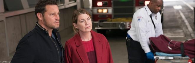 Greys Anatomy Staffel 14 Start Pro 7